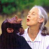 《尚流》:Jane Goodall, 尊重一切生灵