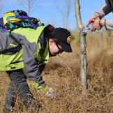 百万植树计划丨2017春季志愿者植树行回顾
