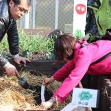 有机农场丨春季学期志愿者培训日记