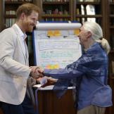 """哈里王子出席根与芽全球峰会,与珍·古道尔再现""""黑猩猩式问候"""""""